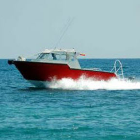 dive support boat / outboard / aluminum