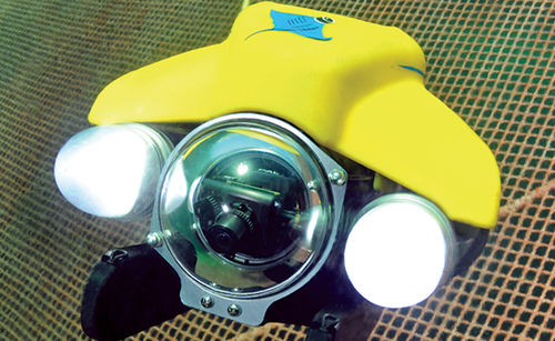 intervention underwater ROV / for fish cage inspection / for aquaculture
