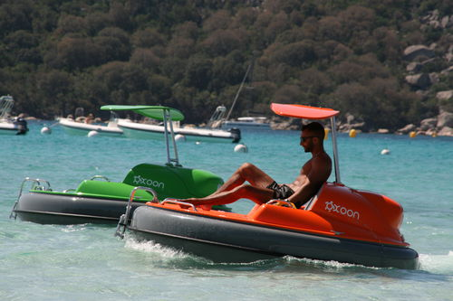 aquatic center boat professional boat / inboard POD drive / electric / container-transportable