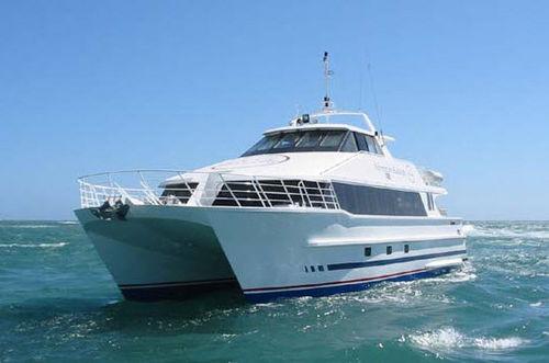 dive support boat professional boat / catamaran / inboard / aluminum