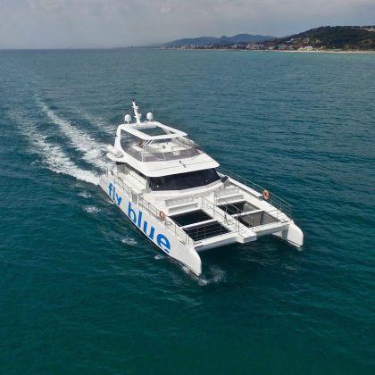 sightseeing boat professional boat / catamaran / inboard