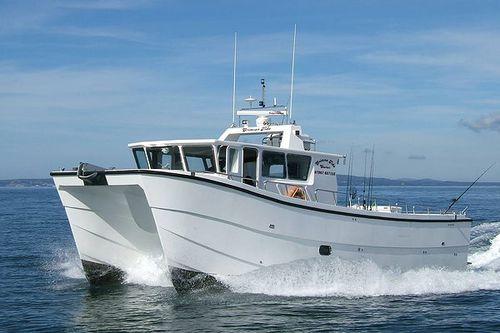 professional fishing boat / catamaran / inboard