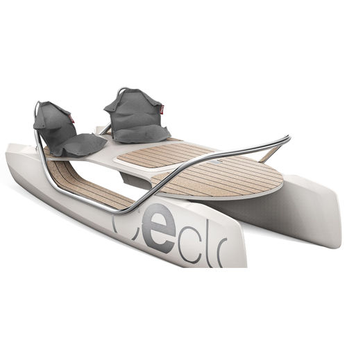 aquatic center boat / catamaran / electric