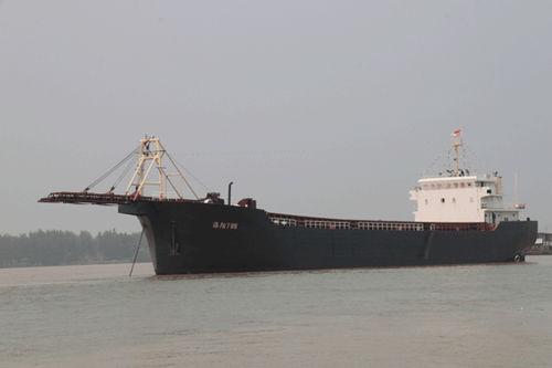 bulk carrier cargo ship