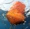 mooring buoyMB600ASAKUA AQUACULTURE & MARINE EQUIPMENTS