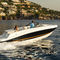 sterndrive runabout