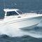 inboard walkaround / sport-fishing / 8-person max. / twin-berth