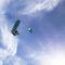 twin-tip kiteboard