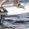 hydrofoil kiteboard / freeride
