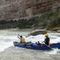 flatwater canoe / Canadian / 2-person / fiberglass