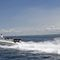 outboard inflatable boat
