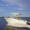 outboard runabout / bowrider / dual-console / sport-fishing