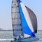 trimaran / racing / open transom / folding arms
