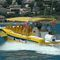 sightseeing boat professional boat / inboard