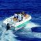 outboard walkaround / center console / sport-fishing / 7-person max.