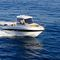 outboard day fishing boat / hard-top / 6-person max. / with cabin