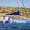 passenger boat professional boat / catamaran / inboard