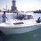 outboard cabin cruiser / hard-top