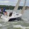 monohull / cruising-racing / open transom / 6-berth
