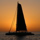 catamaran / charter / open transom / with bowsprit