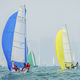 sport keelboat sailboat / racing / with bowsprit