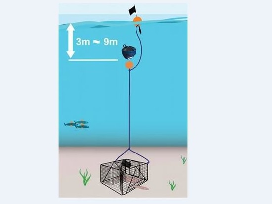 Go!Up Diving buoy