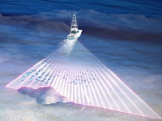 Furuno DFF3D Multi-Beam Sonar