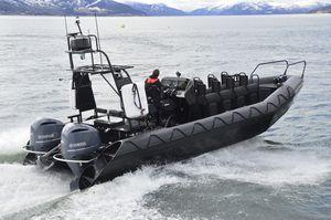 水上バス業務用ボート / 作業船 / ウインドファーム用サービス船 / 実用ボート