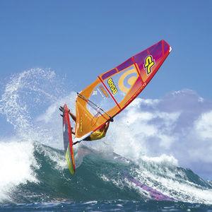 波用ウィンドサーフィンボード / エンドクワッド / 薄状三角型 / ツインフィン