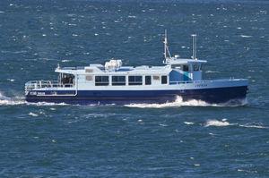 遊覧船業務用ボート / 電動 / アルミ製