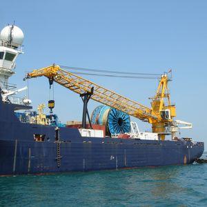 船用クレーン / 港湾 / 重積載用 / ラッフィングジブ