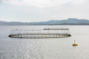 栽培漁業用魚ケージ
