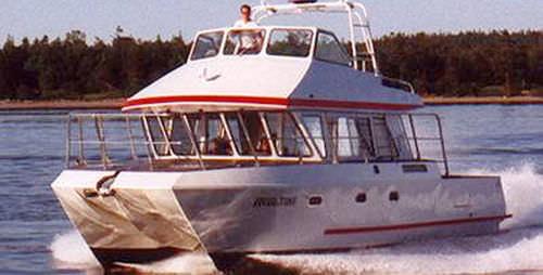 業務用漁船業務用ボート / カタマラン / インボードウォータージェット / ディーゼル式