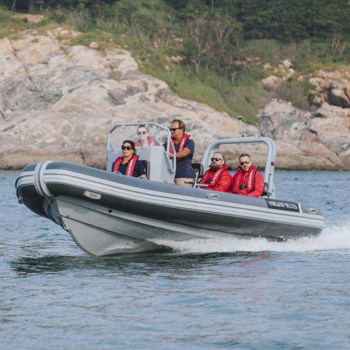 監視船 / 作業船 / 船外 / アルミ製