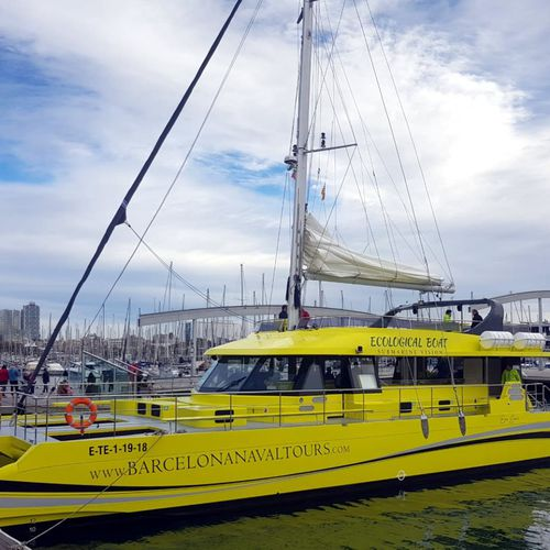 客船業務用ボート / カタマラン / ディーゼル発電機付きハイブリッド