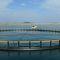養殖用魚ケージSTANDARD Toford Aquaculture