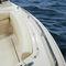船外機ランナバウトボート