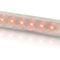 屋内用照明バレット / 屋外用 / ボート用 / LED