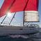 モノハル / 海洋クルージング / オープントランサム / ブリッジサロン