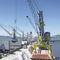 港湾クレーン / 重積載用 / フロアトラック / ラッフィングジブ
