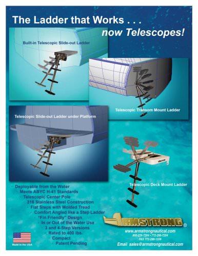 TelescopicLadders
