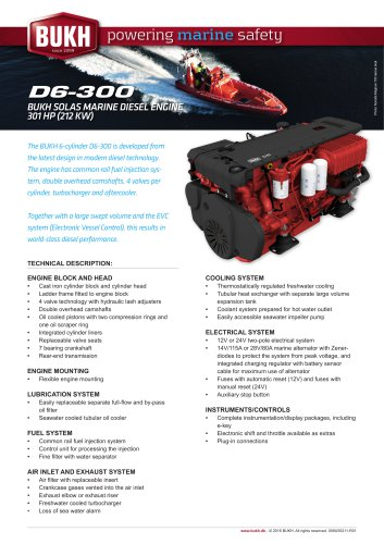 D6 / 300