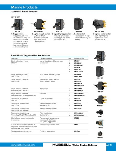 12 Volt DC Rated Switches