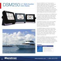 DSM250