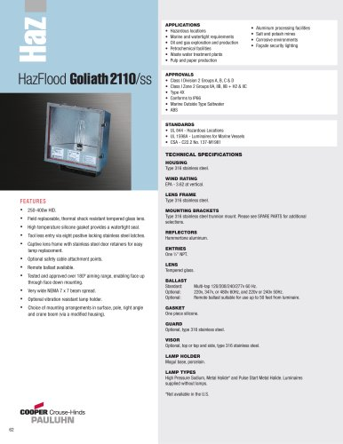 Pauluhn HazFlood Goliath 2110/ss Floodlights