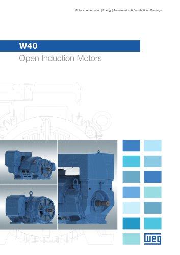 W40 - Open Induction Motors