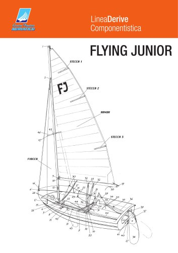 flying_junior