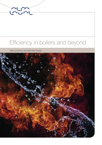 Steam production and waste heat recovery