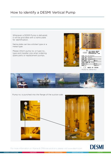 How to identify a DESMI vertical pump
