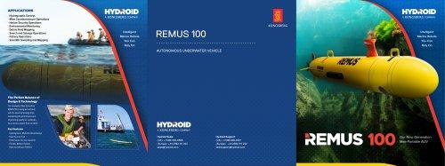 Remus 100 Autonomous Underwater Vehicle